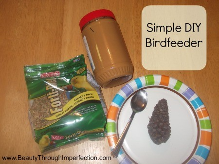 Simple Bird Feeder DIY (Toddler Friendly)