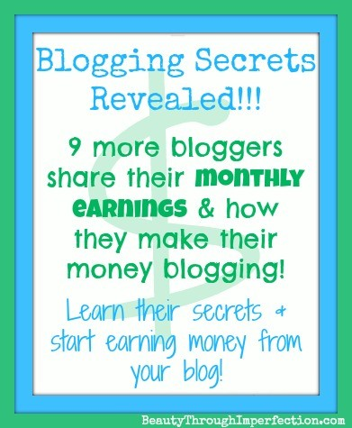 How Much Money Can a Blogger Earn? (part 3)