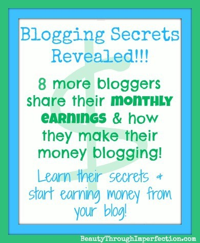 How much money can a blogger earn
