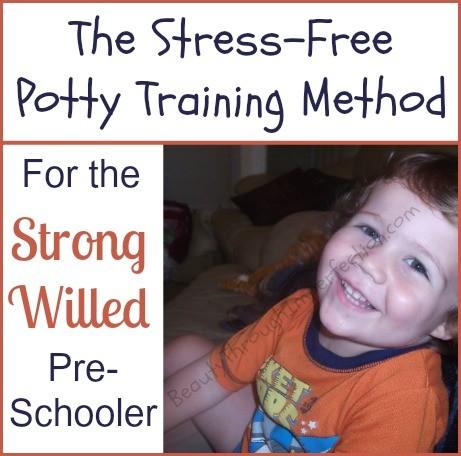 The Stress Free Potty Training Method