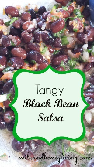 Tangy Black Bean Salsa