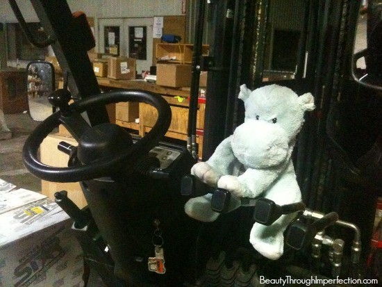 stuffed animal driving fork lift