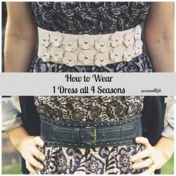 1-dress-4-seasonsdouble-belt1