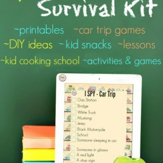 summer-survival-kit-final-cover-467x700 (1)