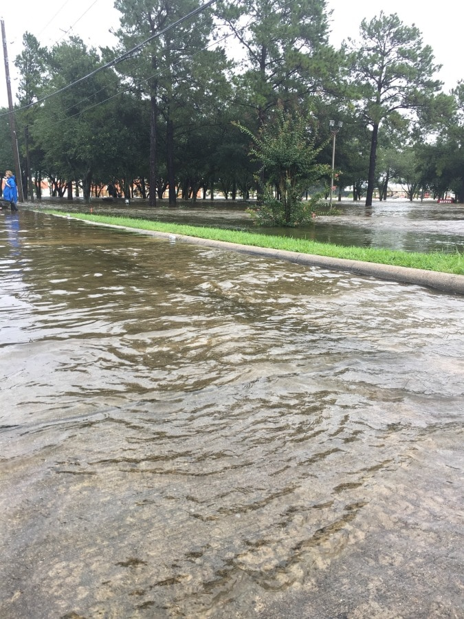 Hurricane Harvey: Photos from our walk today